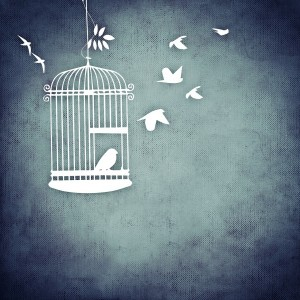 Does Social Media Have you in a Cage?