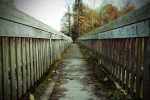 Dear Therapist: Do You Believe In Free Will?