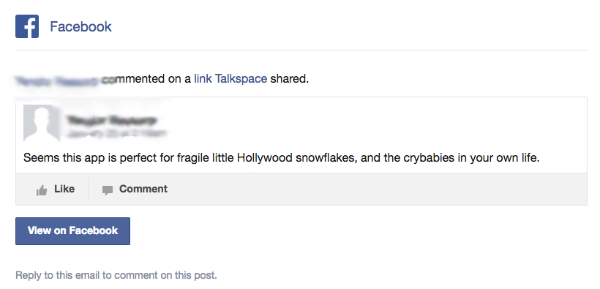 snowflake comment screenshot Talkspace Facebook