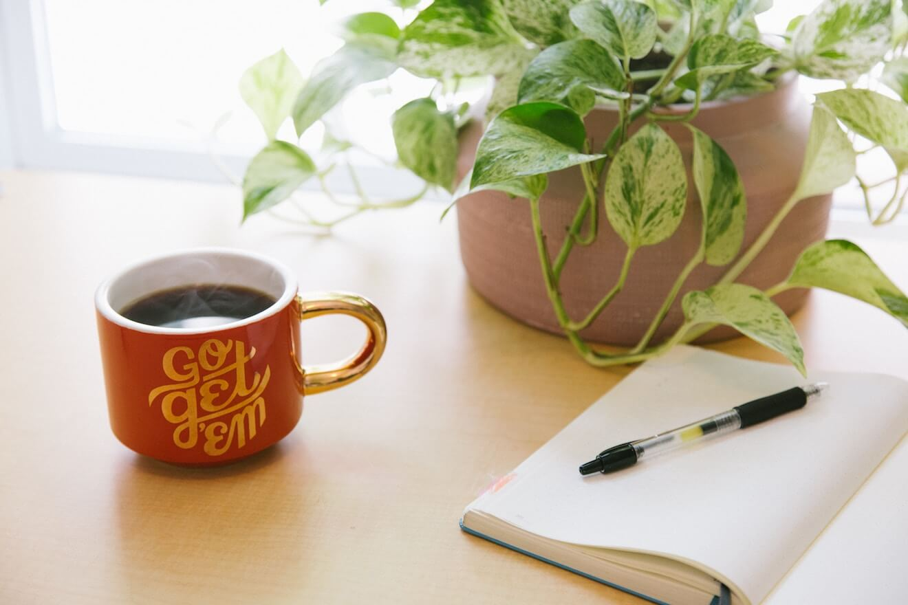 "A mug that says ""Go Get 'Em"" next to a plant and notebook"