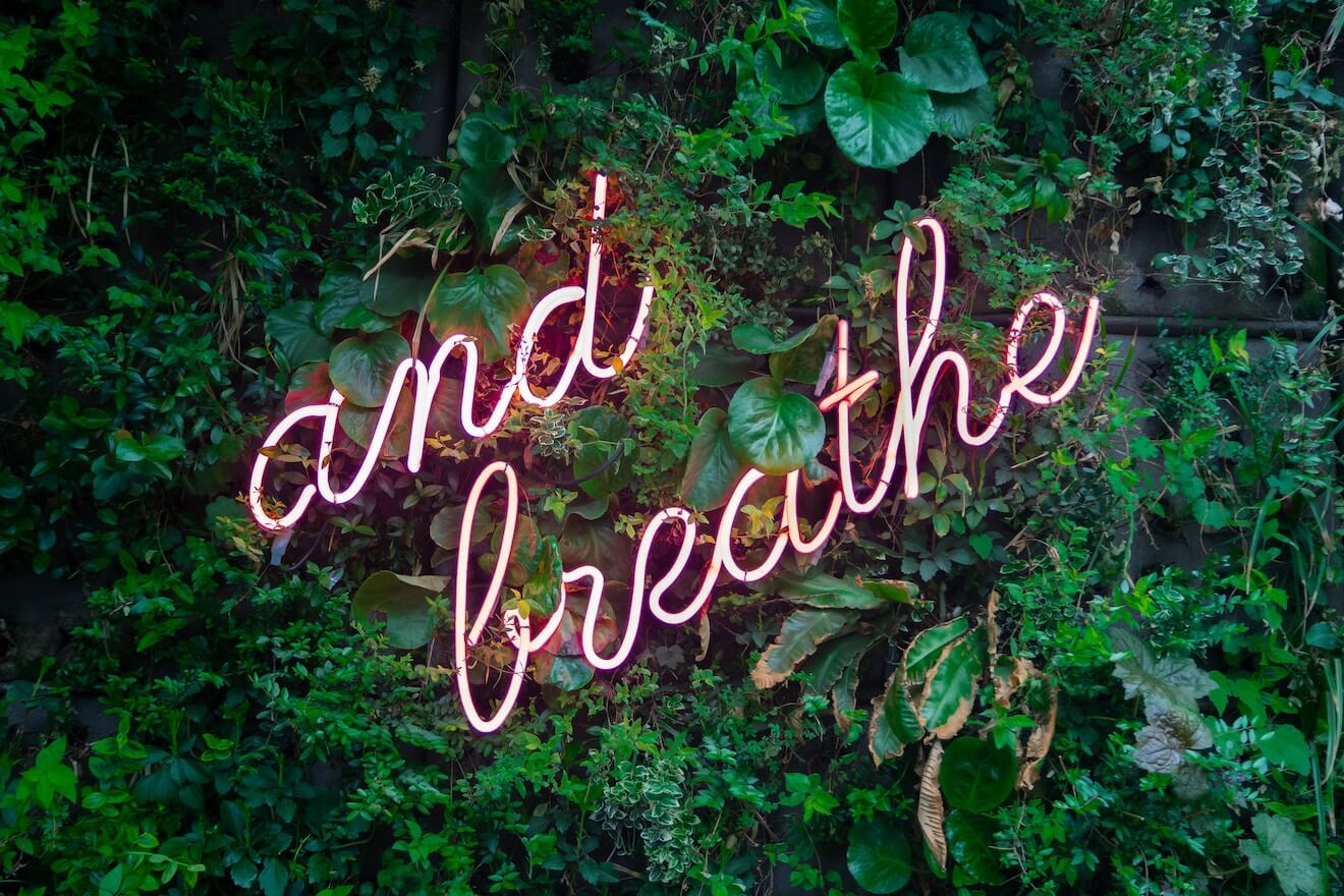 """and breathe"" in neon on a ivy wall"
