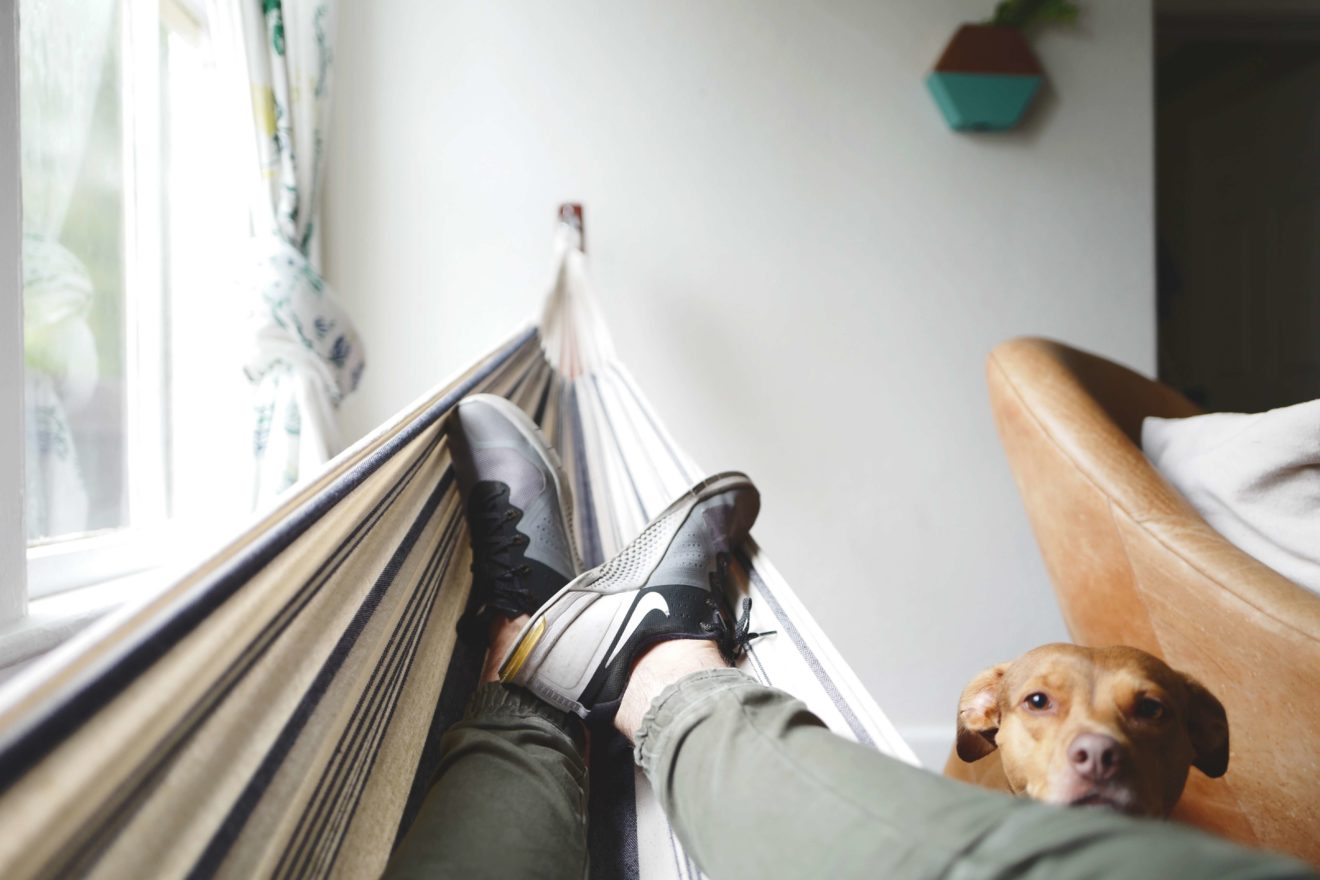 Man laying in hammock with dog laying head on lap