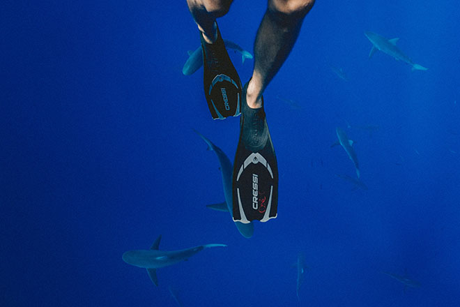 legs with flippers under water