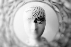 Diagram on a head