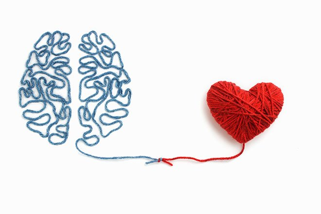 Brain and heart made of string