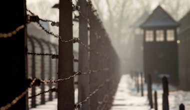 Auschwitz in winter