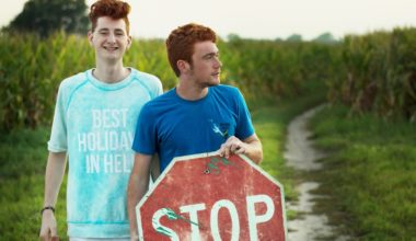 two boys stealing stop sign
